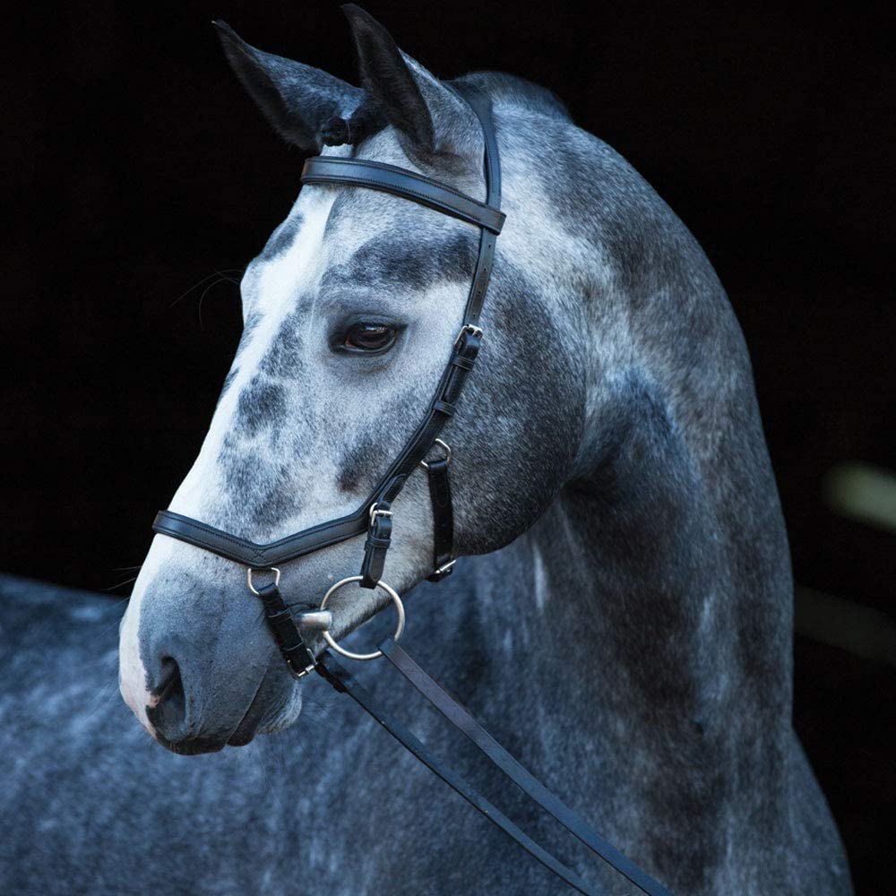 Horseware Rambo Micklem Nippon regular agency Bridle Competition New item