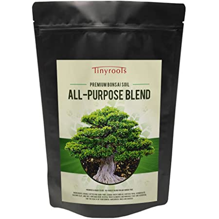 Amazon Com Bonsai Tree Soil All Purpose Blend 4 Quarts Cz Grain Brand 100 Organic All Natural Great For Fast Growing Bonsai Trees Patio Lawn Garden