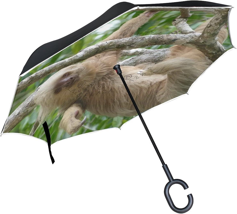 LEISISI Costa Rica Sloth Double Layer Ingreened Umbrella Reverse Auto Open Umbrella Windproof UV Predection Upside Down Umbrella for Car Rain Outdoor Use