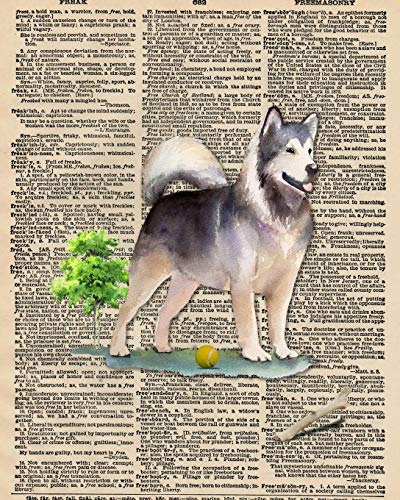 Notebook: 8x10 Inch Matte Softcover Paperback Journal With 120 Blank Lined College Ruled Pages, Upcycled Dictionary Husky Dog Cover Design