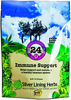 silver lining equine supplements