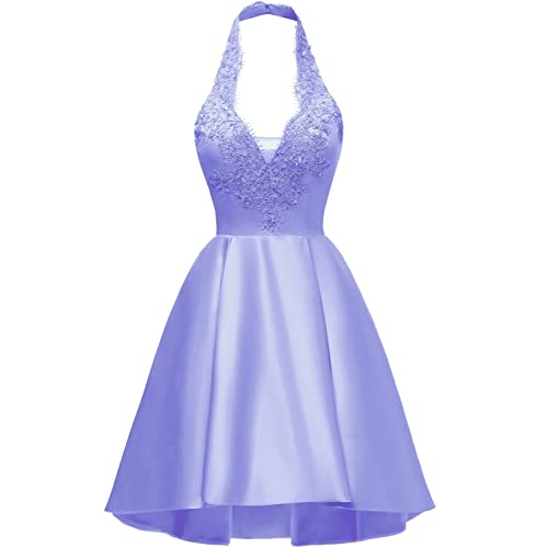 Lilac Prom Dresses Short Plus Size: Amazon.com