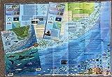 Franko Maps F57102 Florida Keys Dive & Adventure Map Pack