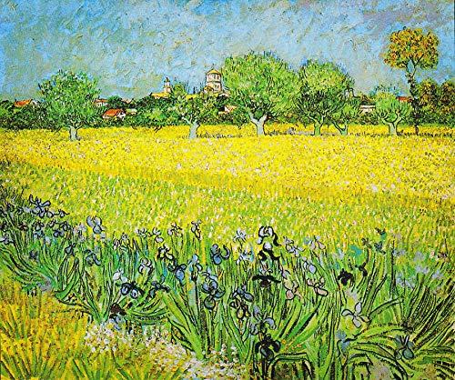 Puzzle 1000 Piezas Obsequio artístico de la réplica 1 de la Famosa Serie de Pinturas de Van Gogh Puzzle 1000 Piezas Animales Educativo Divertido Juego Familiar para niños adul50x75cm(20x30inch)