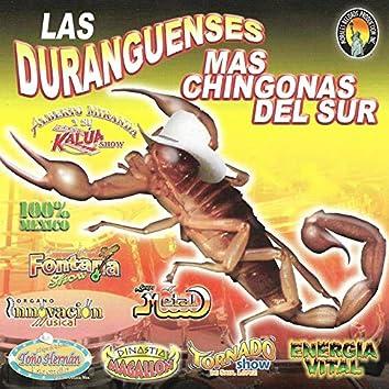 Las Duranguenses Mas Chingonas del Sur
