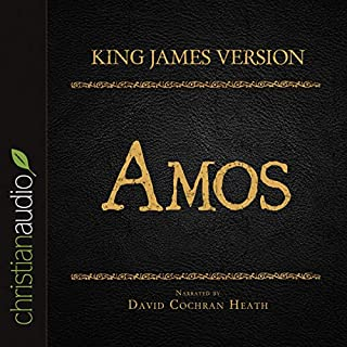 Holy Bible in Audio - King James Version: Amos cover art