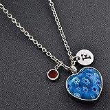 OTGOOT Urne Anhänger Urne Halskette Gedenkurne Blau gefärbtes Glas Feuerbestattung Urne Halskette...