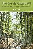 Boscos de Catalunya: Història i actualitat del món forestal
