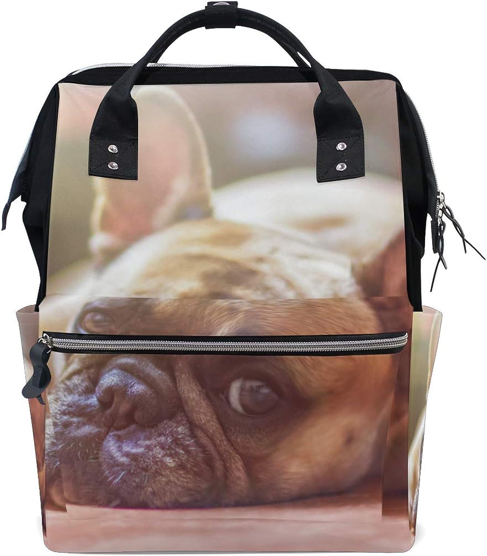 FANTAZIO Backpacks Lazy Bulldog Pet Lying School Bag Canvas Daypack