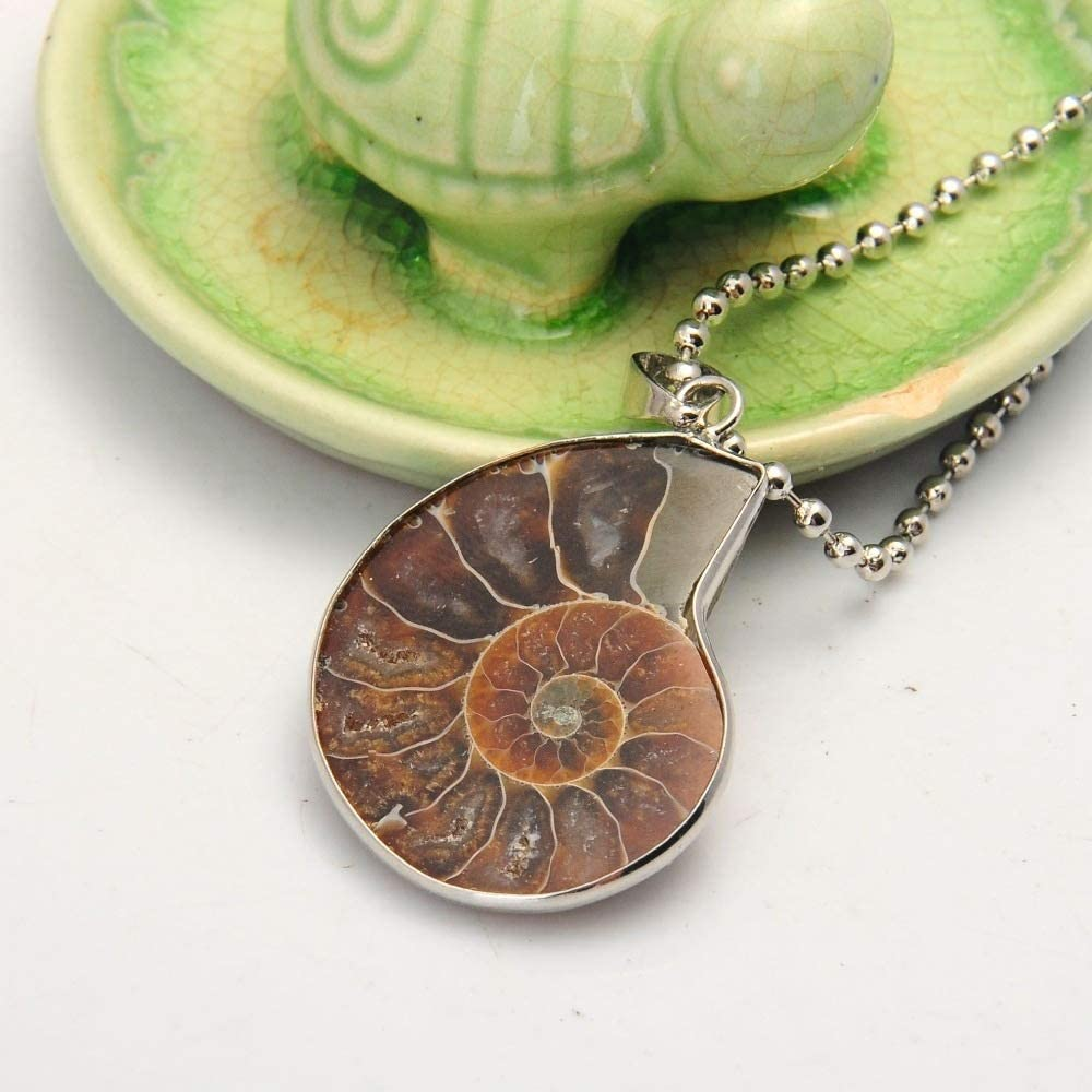 Necklace Energy Stone Healing Divination Necklace for Home Decoration Gift Collection Natural Beauty ZRSJ Chic Crystal Metal Color : Rope Natural Stone Fossil Shell Snail Pendant