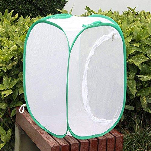 AZX Translúcido Malla Insecto Mariposa Plantas Habitat terrario, Terrarios Pegable para Insecto (Verde)