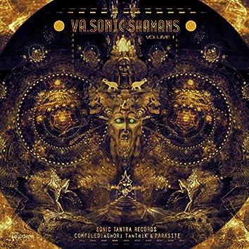 VA - Sonic Shamans Vol II