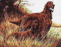 ナンバーキットによるDIY充填オイルキャンバスペイントアイリッシュセッター犬ナンバーキットによるDIYペインティングオイルペイント描画キャンバス家の装飾ギフト