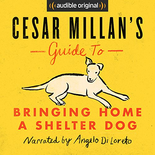 Cesar Millan's Guide to Bringing Home a Shelter Dog cover art