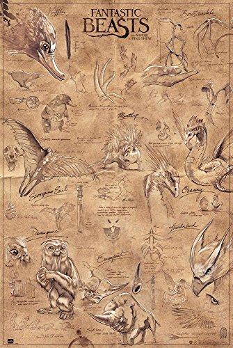 Fantastic Beasts - Phantastische Tierwesen - Animals - Film Kino Poster Druck - Größe 61x91,5 cm + 1 Packung tesa Powerstrips® - Inhalt 20 Stück