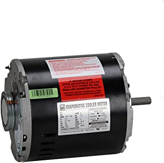 Dial 2202 1/3 hp 115V 2 Speed Permanently Lubricated Copper Wound Motor