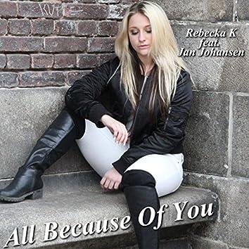 All Because of You (feat. Jan Johansen)