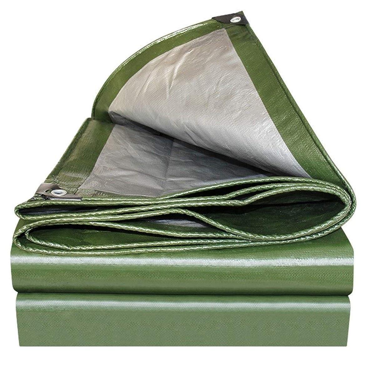 ばかげたワゴン注ぎますLCAIHUA 防水シートポリエチレン針の目なし耐摩耗性エッジ補強屋外のトラック庭園、13サイズ (Color : Green, Size : 6x10M)