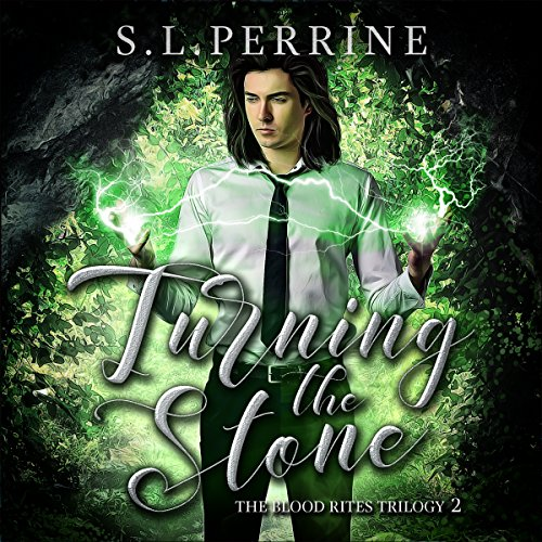 Turning the Stone audiobook cover art