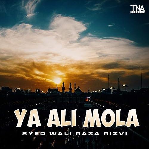 Ya Ali Mola by Syed Wali Raza Rizvi on Amazon Music - Amazon com