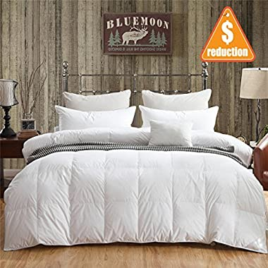 Blue Moon 90% White Goose Down and 10% Feather Blend Filling Comforter 100% Organic Cotton Shell Down Proof-Solid Hypo-allergenic Winter Duvet -Unique Presents for family … (California King/King)