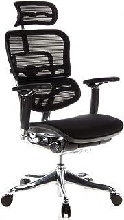 hjh OFFICE 652650 Silla de Oficina ERGOHUMAN Plus Tejido de Malla/Tejido Negro, sólido Aluminio Pulido, ergonómico, sillón Alta Gama