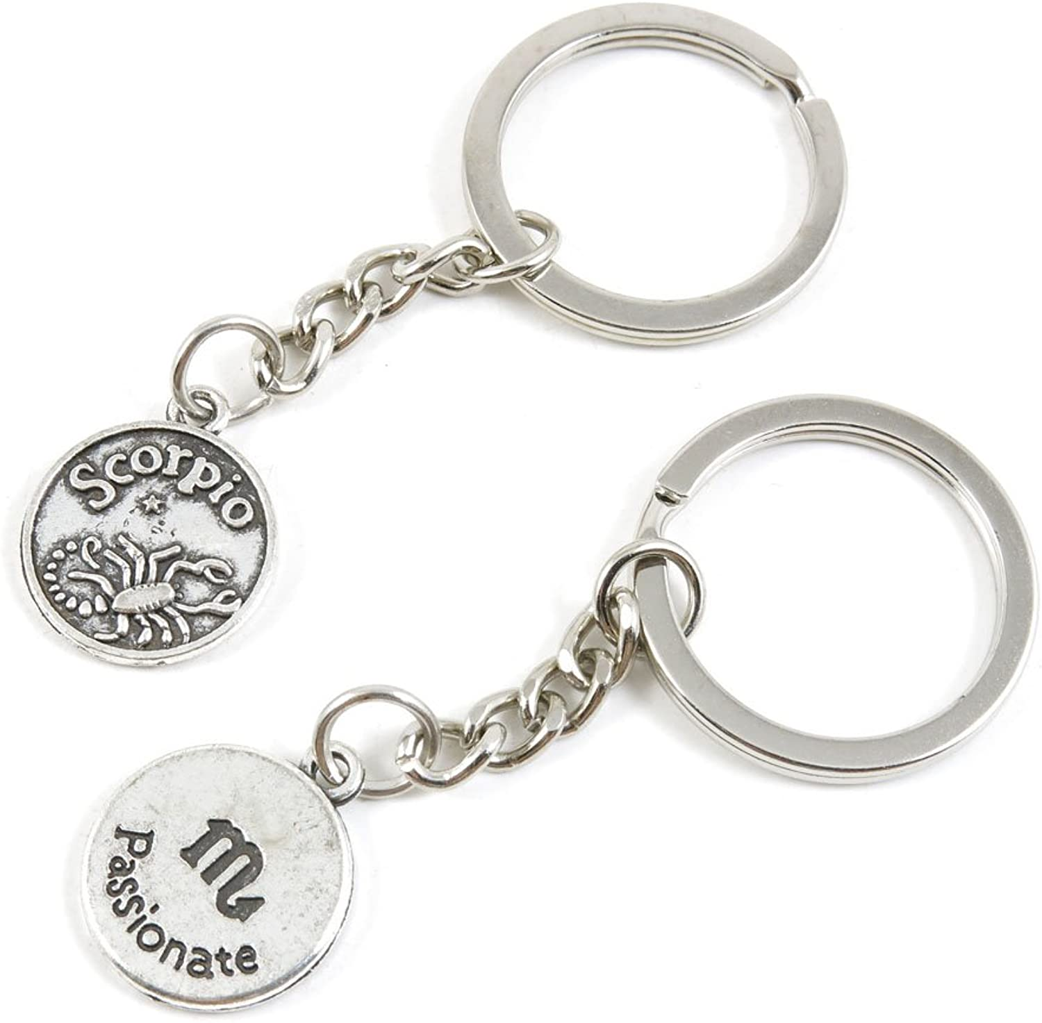 100 Pieces Keychain Keyring Door Car Key Chain Ring Tag Charms Bulk Supply Jewelry Making Clasp Findings M5BF5R Scorpio