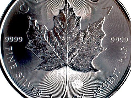 1 Unze oz Silber Maple Leaf 2020 bei uns einzeln in Münzkapseln verpackt