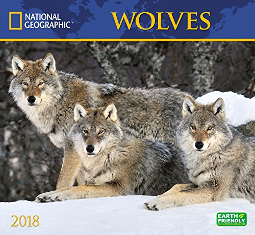 National Geographic Wolves 2018 Wall Calendar