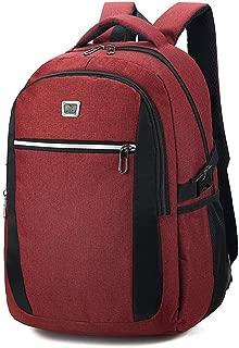 Sturdy Men's Business Computer Backpack Travel and Leisure Travel Shoulder Handbag Schoolbags Large Capacity (Color : Claret)