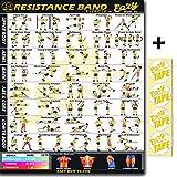 Workout-Poster von Eazy How To - Mit Widerstandsband-Übungen, groß: 51x 74cm, für...