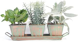Green House Pots 10 Sets Slate Plan Labels Signs Herb Planters