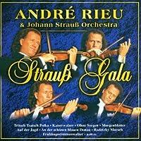 Andr茅 Rieu & Johann Strauss Orchestra by Andre Rieu