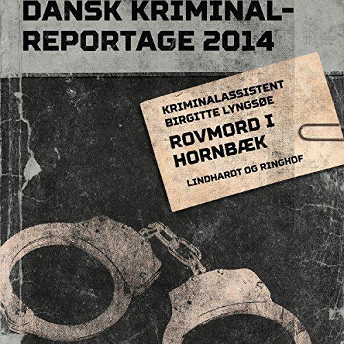 Rovmord i Hornbæk audiobook cover art