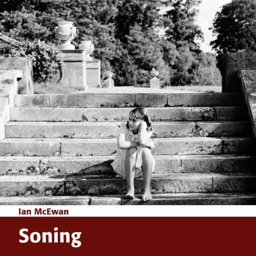 Soning [Zoning] audiobook cover art