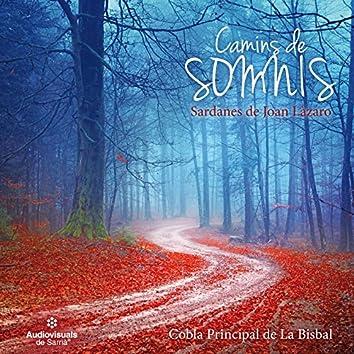 Camins de Somnis. Sardanes de Joan Lázaro