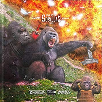 Year Of The Gorillas