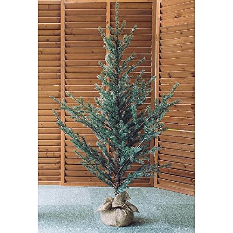 指令石の韓国語ホーゲボーニング HOGEWONING クリスマスツリー?160cm HW7028