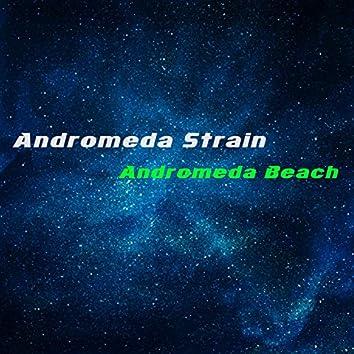Andromeda Beach