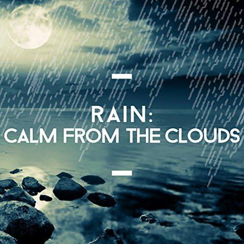 Rain Sounds Ambience, Natural Rain Sounds & Rain Sounds