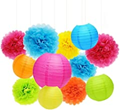 ZJHAI Set of 20 Assorted Rainbow Color Paper Pom Poms and Paper Lanterns, 5 Colors, for Party, Baby Shower and Wedding Decorations