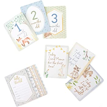 "Itzy Ritzy Infant Occasion Markers - Set of 14 Double-Sided Cards Features 28 Monthly Markers; Each Card Measures 5"" x 7""; Printed on Cardstock; Woodland Animals"