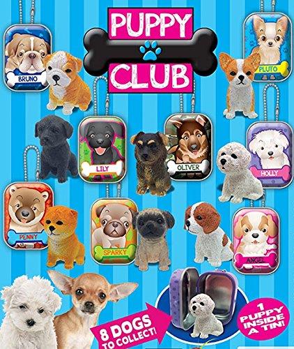 Chiot amis club Fluffy Série 2.