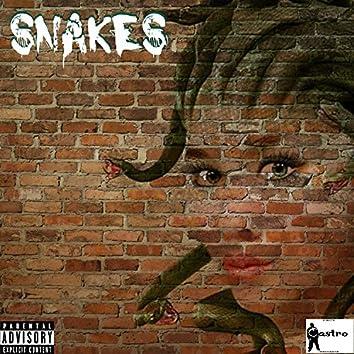Snakes (feat. Nucklez Castro & Jay Rocc) - Single