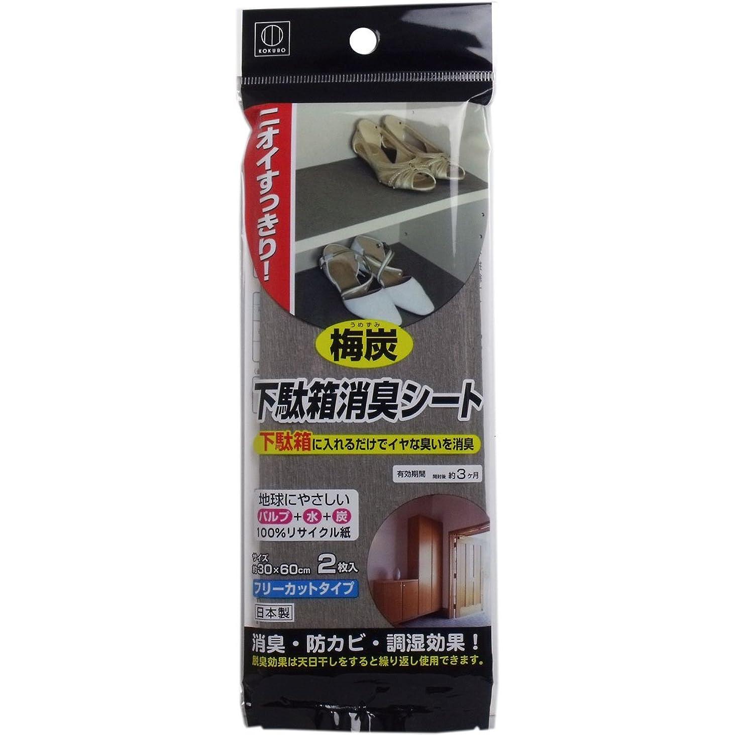 写真撮影魔術チャレンジ日本製 japan 3662 梅炭下駄箱消臭シート2枚入り 【まとめ買い10個セット】