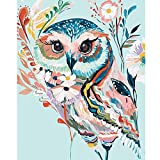 Paint by Number Kit for Adults Beginner 16X20 Inch (Rainbow Owl)