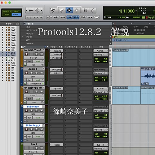 Protools 12  Commentary book English Ver (Japanese Edition)