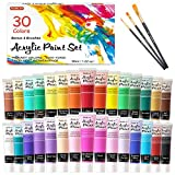 Acrylic Paint Set, Shuttle Art 30 Colors Acrylic Paint in Tubes (36ml) with 3 Brushes, Artist Grade Paint, Rich Pigments, Non-Toxic for Artists, Beginners and Kids on Rocks Crafts Canvas Wood Fabric