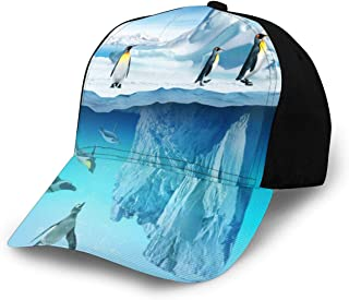 Boys and Girls 100/% Polyester Funny and Happy Iceberg Mesh Cap Stretch Trucker Mesh Cap for Unisex