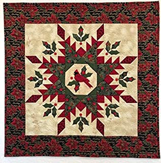 Table Top Decoration Multicolor Art Mural Colorful Patchwork Textile Wall Hanging Lap Quilt Cardinal Feathered Star 30